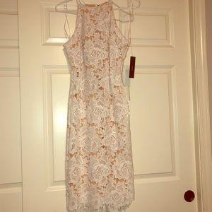 Lace Overlay Lulus Dress